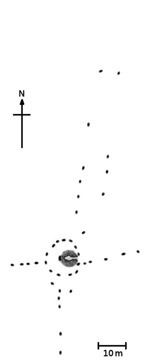 돌기둥의 위치를 도식화한 그림 - Chmee 2(w) 제공